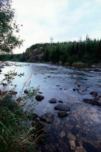 flowing_stream