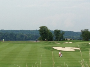 8 fairway, from the tall grass