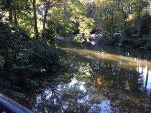 The view from Crim Dell bridge. Homecoming 2013.