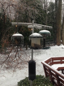 icy feeder after storm