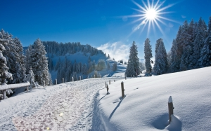 Nature_Seasons_Winter_Winter_road_029477_